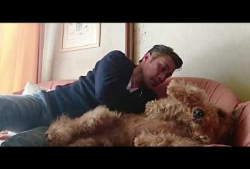 I love Airedale Terrier・・・