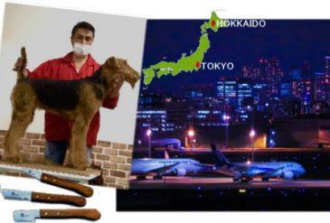 2021年4月の東京・北海道でのイベントは緊急事態宣言により6月に延期